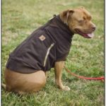 Carhartt Dog Jacket Green