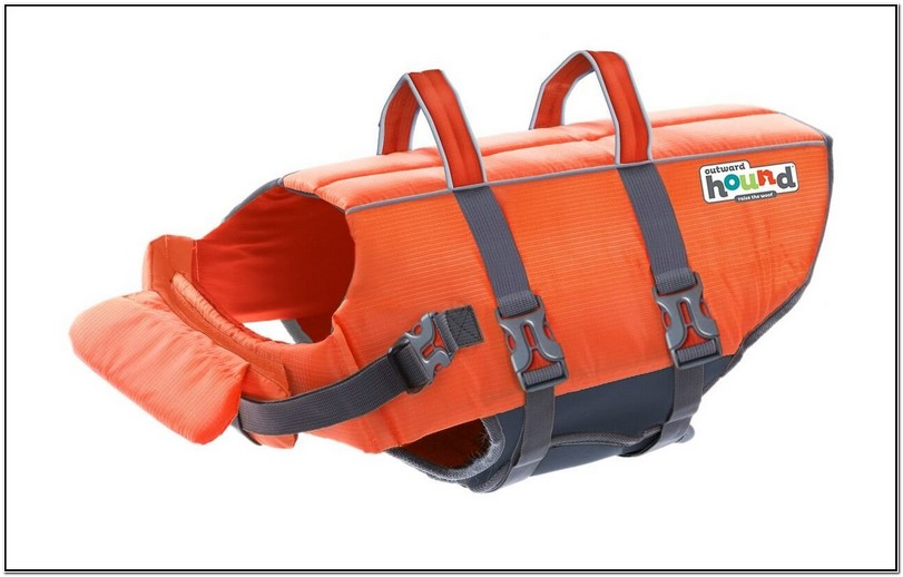 Cat Life Jacket Amazon