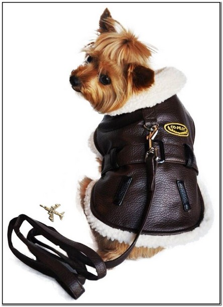 Faux Leather Jacket For Dogs