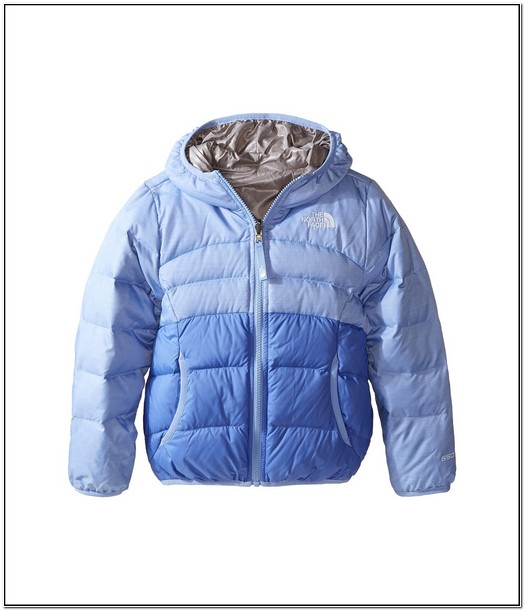 North Face Toddler Jacket Clearance 2t