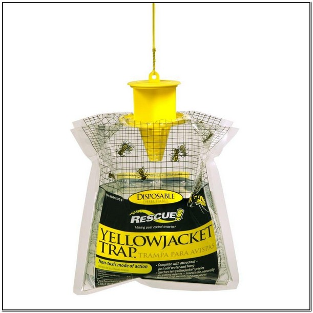Rescue Yellow Jacket Trap Review